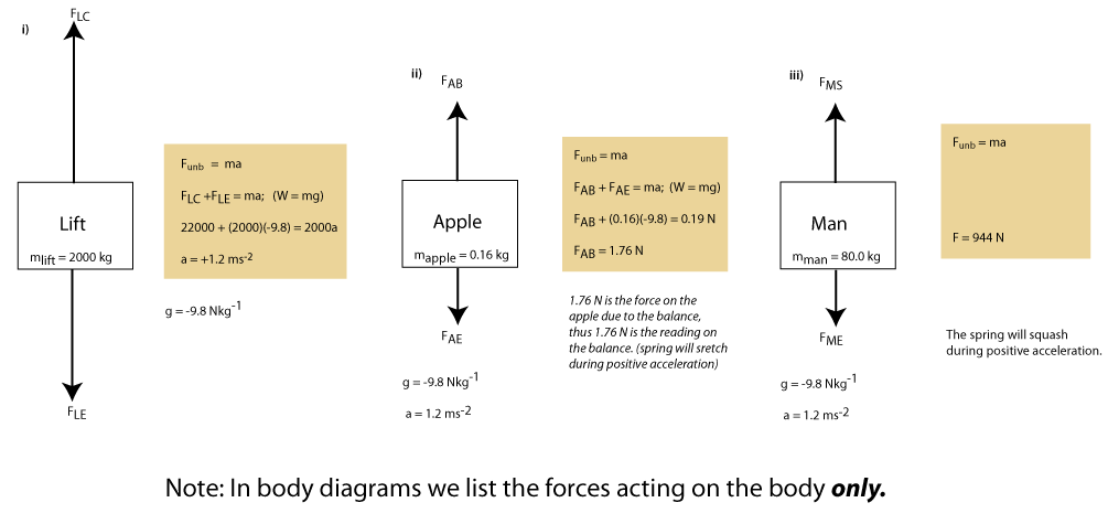 free body diagrams for lift problem
